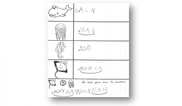 kit pedagogique Décolage - D3 - animaux 2