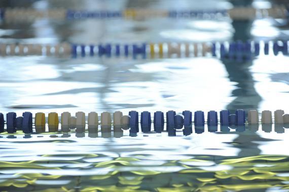 Les Socles de compétences précisent que l'élève devra « adopter une attitude de sécurité en milieu aquatique ».