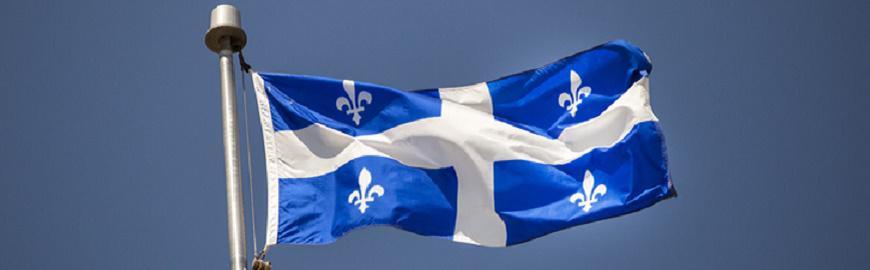 Drapeau québécois illustrant le salon virtuelle